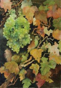 First Harvest by Jane Brackman